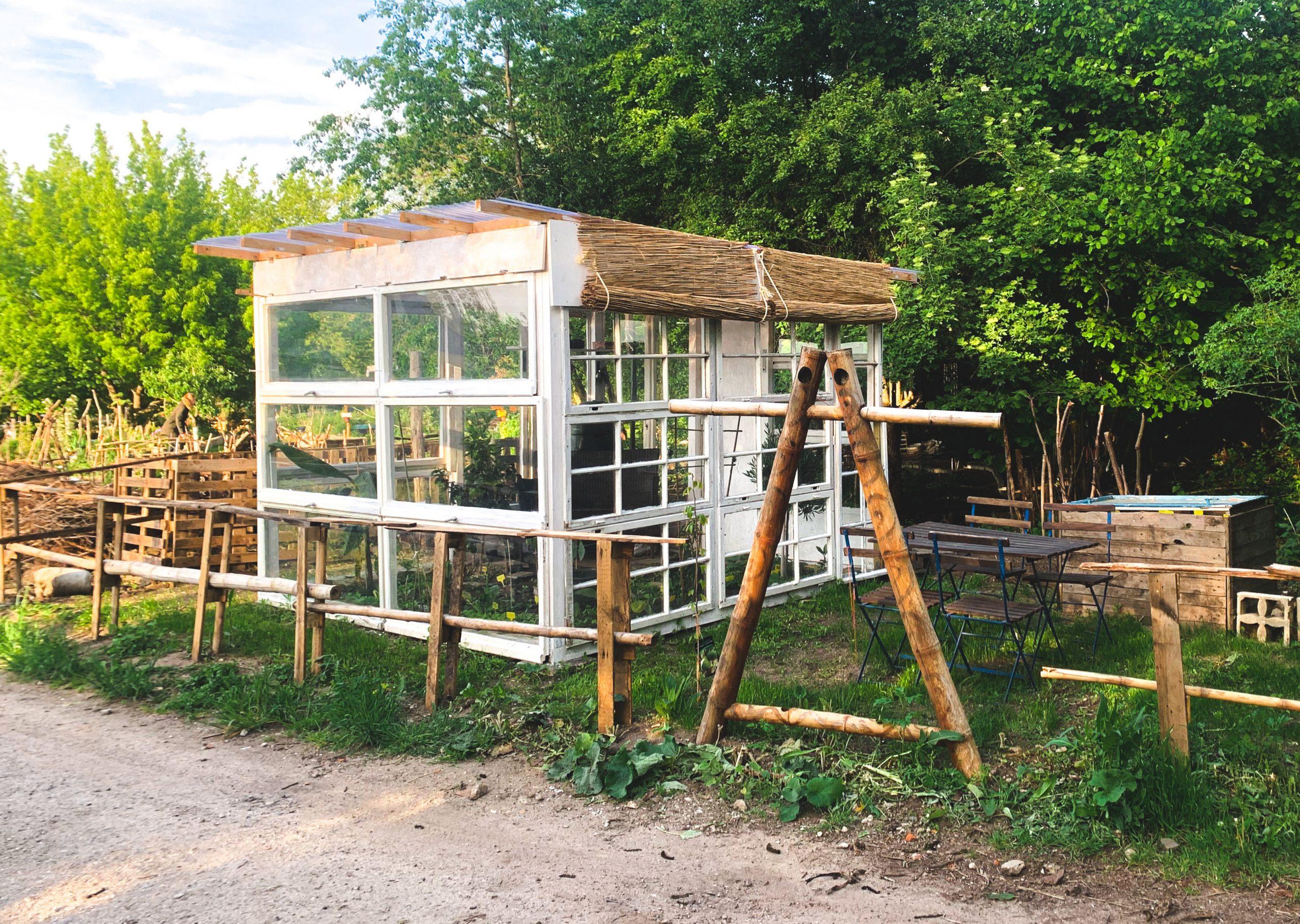 Ein selbst gebautes Gewächshaus mit Holzfenstern steht vor Bäumen